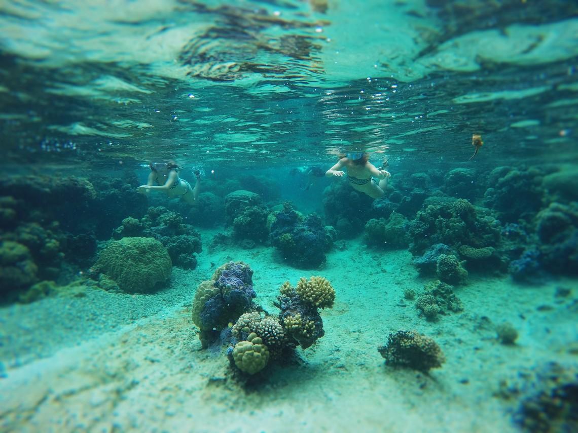 https://tahititourisme.com.au/wp-content/uploads/2017/08/Bora-Bora-Reef-Discovery-2.jpg