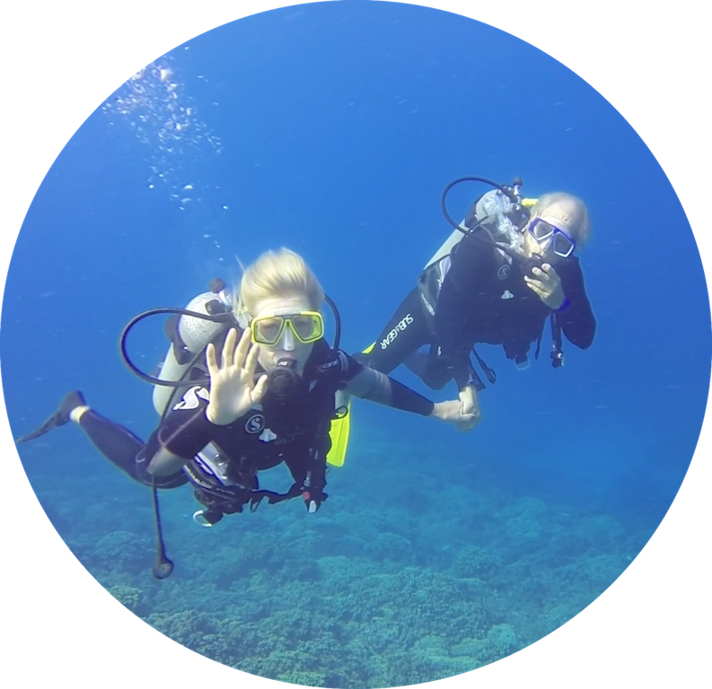 https://tahititourisme.com.au/wp-content/uploads/2017/08/Divers-in-the-first-try.png