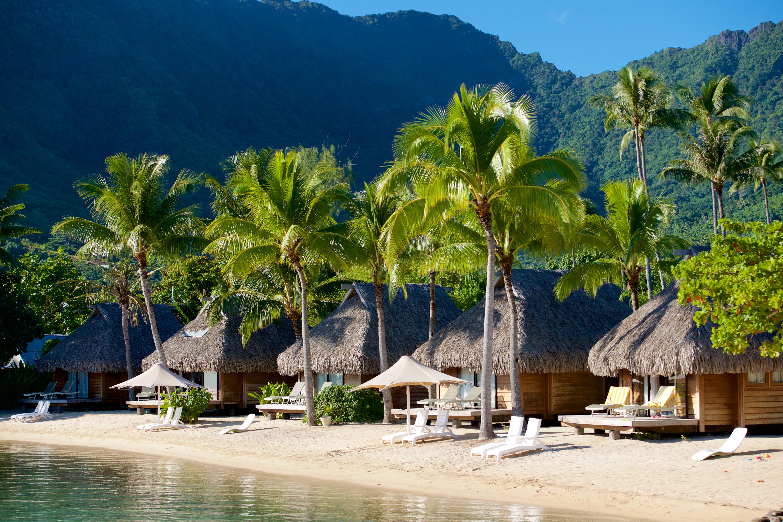 https://tahititourisme.com.au/wp-content/uploads/2017/08/HEBERGEMENT-Manava-Beach-Resort-and-Spa-Moorea-2-Tim_McKenna.jpg