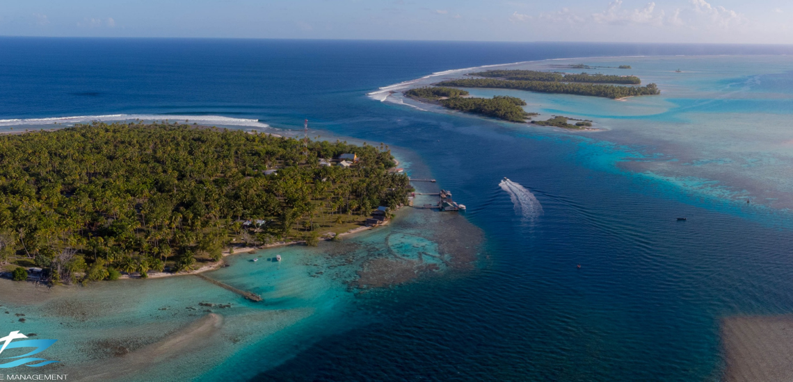 https://tahititourisme.com.au/wp-content/uploads/2017/08/Tahiti-Dive-Management.png