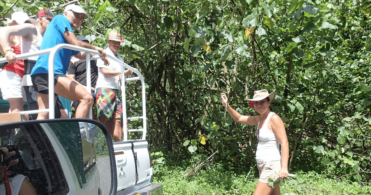 https://tahititourisme.com.au/wp-content/uploads/2017/08/Tahiti-Safari-Expeditions_1140x500-min.png