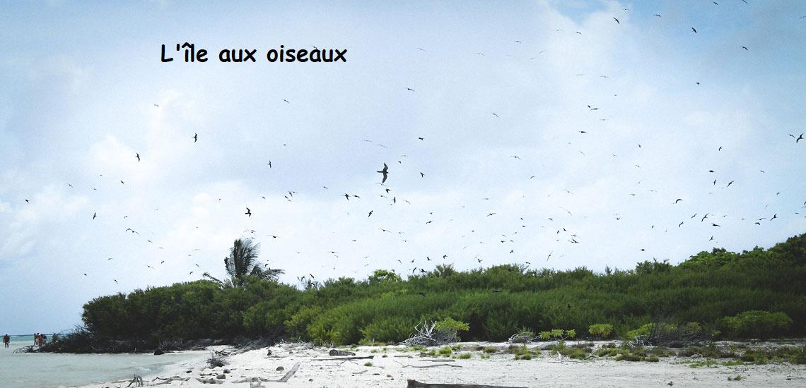 https://tahititourisme.com.au/wp-content/uploads/2017/08/Tahiti-Voile-et-Lagon-photo-de-couv-2.jpg