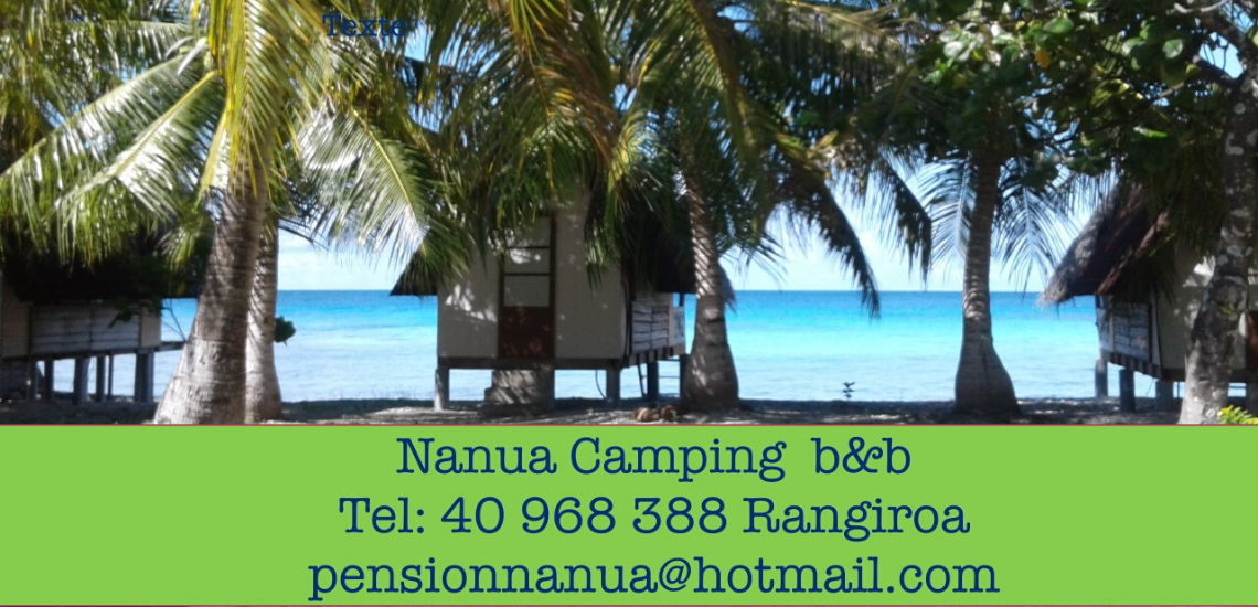 https://tahititourisme.com.au/wp-content/uploads/2017/08/nanuacamping_1140x550.png