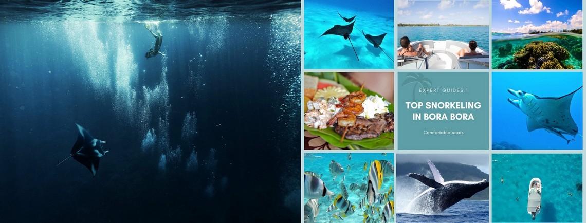 https://tahititourisme.com.au/wp-content/uploads/2017/08/reef-discovery-bora-bora.jpg