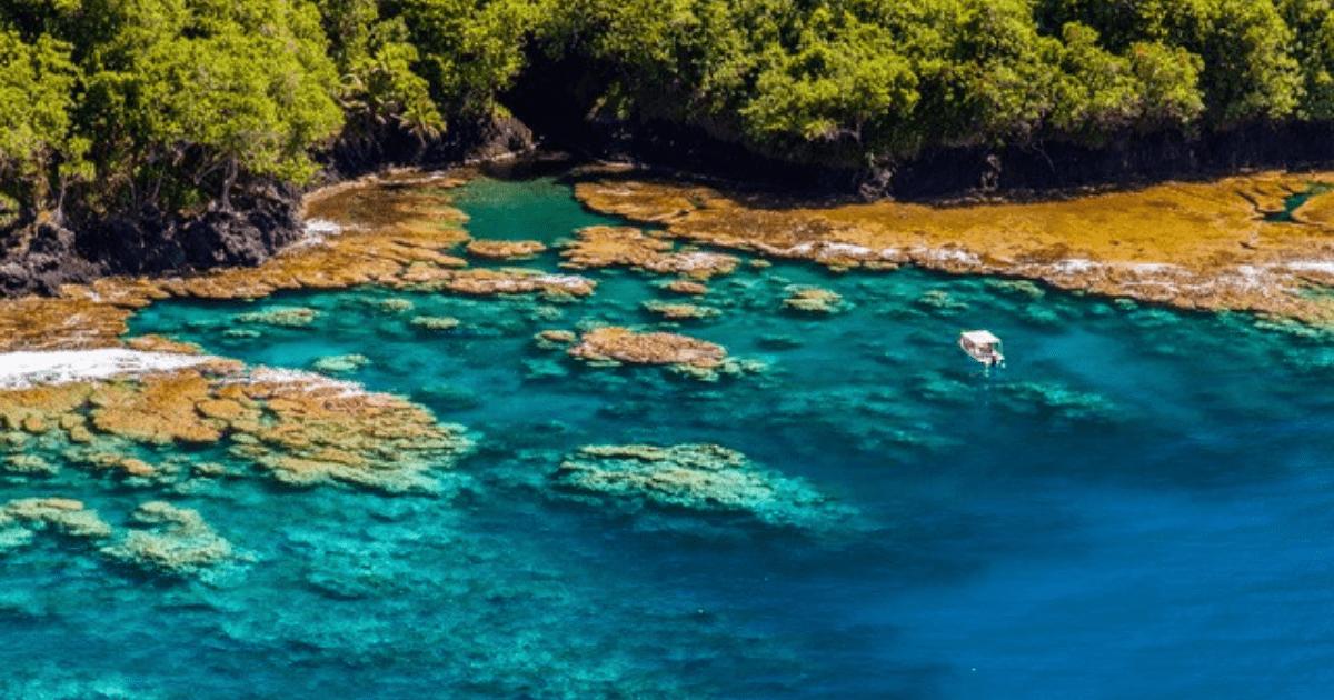 https://tahititourisme.com.au/wp-content/uploads/2017/09/TahitiItiToursSurf_1140x550-min.png