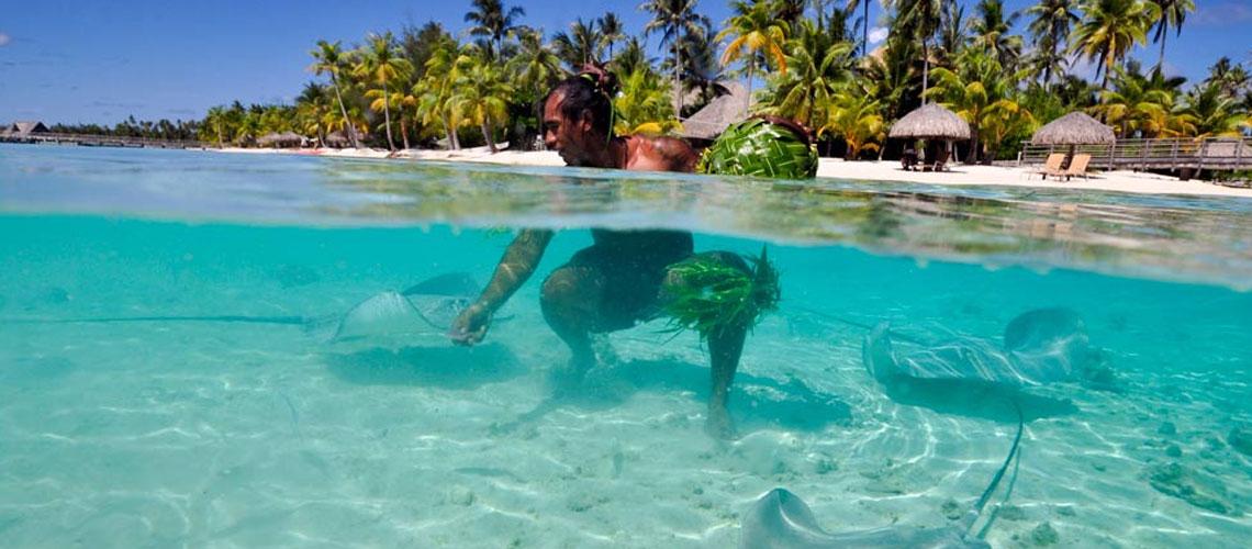 https://tahititourisme.com.au/wp-content/uploads/2017/11/InterContinental-Bora-Bora-Resort-Thalasso-Spa-2.jpg