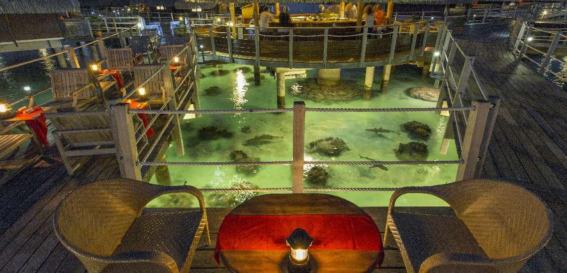 https://tahititourisme.com.au/wp-content/uploads/2017/12/Hilton-Moorea-Lagoon-Resort-Spa-Restaurant-Toatea-Creperie-Bar-2_600.jpg