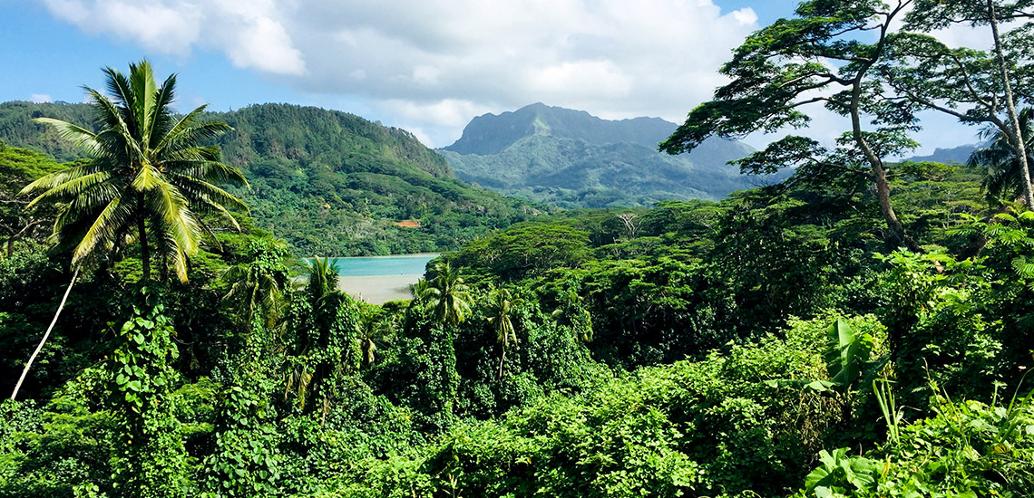 https://tahititourisme.com.au/wp-content/uploads/2018/05/ACTIVITES-TERRESTRES-Green-Tours-Huahine-2.jpg