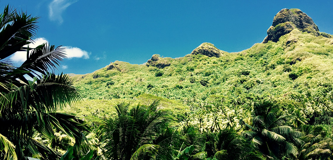 https://tahititourisme.com.au/wp-content/uploads/2018/05/ACTIVITES-TERRESTRES-Green-Tours-Huahine-3.jpg