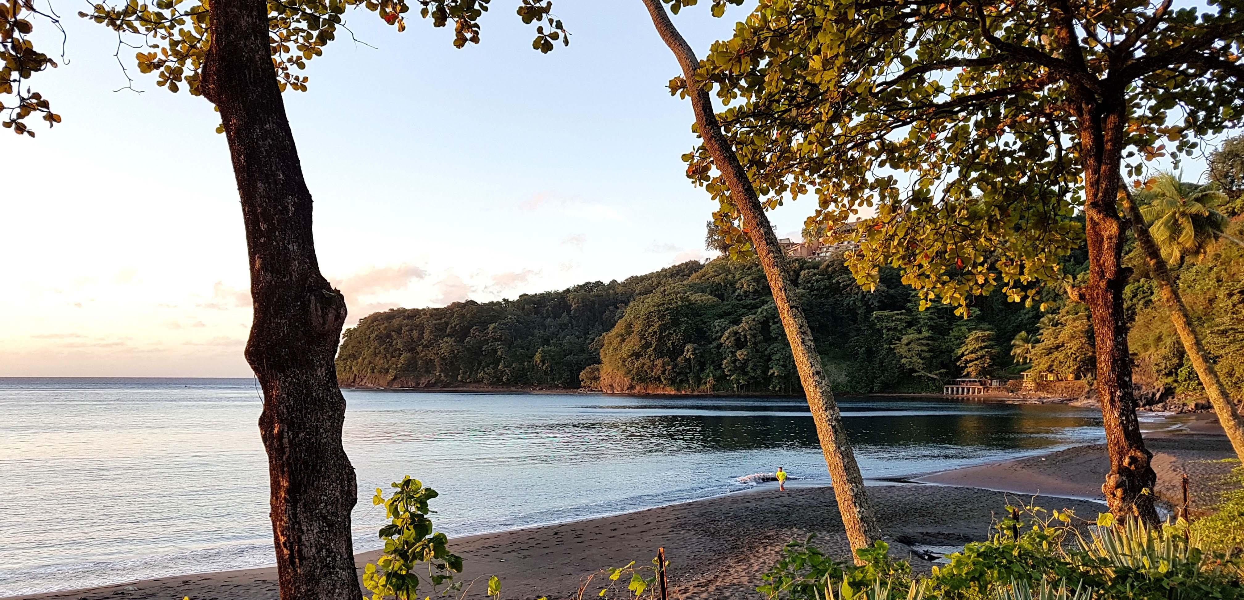 https://tahititourisme.com.au/wp-content/uploads/2018/09/pacific-studio-TH.jpg