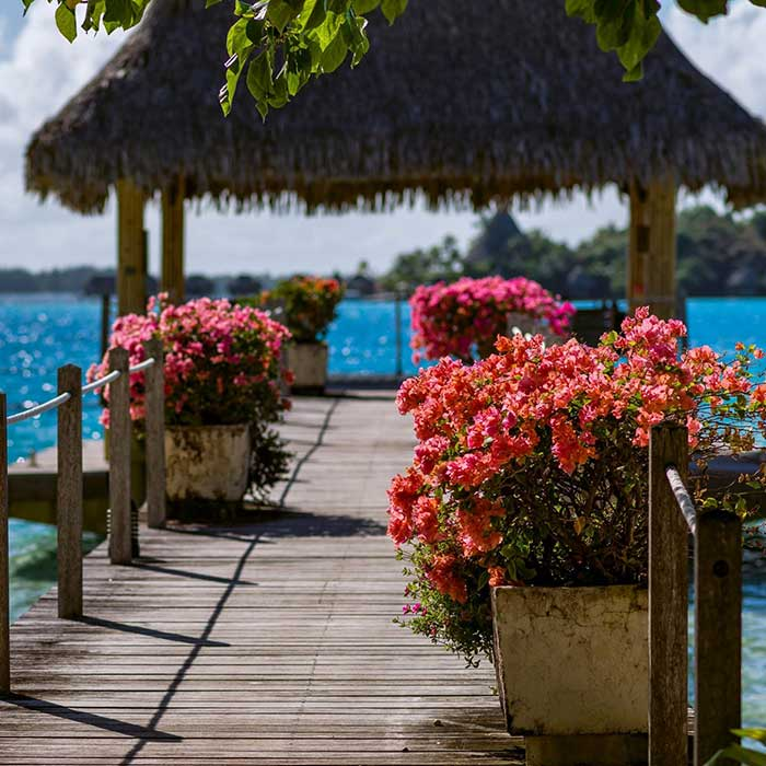 InterContinental Le Moana Resort Bora Bora – COUPLES FREE NIGHT DEAL!