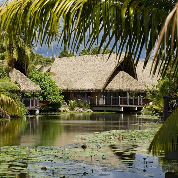 Maitai Lapita Village Huahine – FAMILY FREE NIGHT DEAL