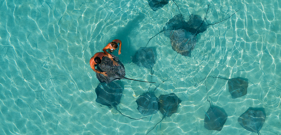 https://tahititourisme.com.au/wp-content/uploads/2019/09/1-InterContinental-Moorea-Resort-Cover-B-1140550.jpg