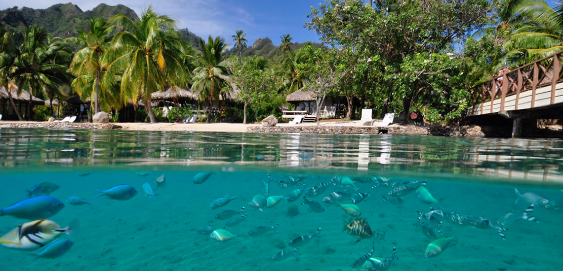 https://tahititourisme.com.au/wp-content/uploads/2019/09/2-InterContinental-Moorea-Resort-resized.jpg