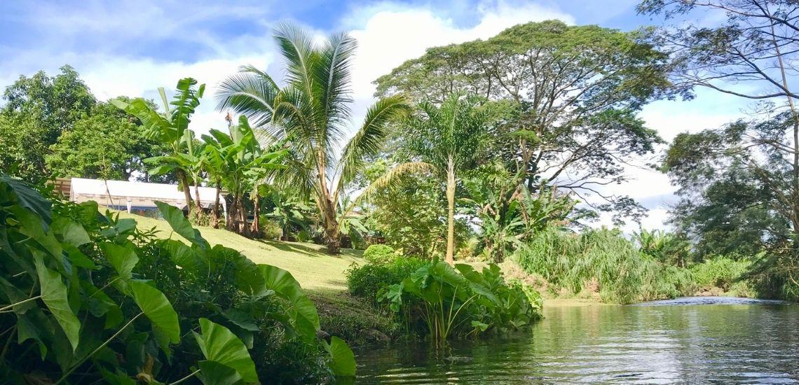 https://tahititourisme.com.au/wp-content/uploads/2020/03/Teanavai_Camping_1140x5550px.jpg