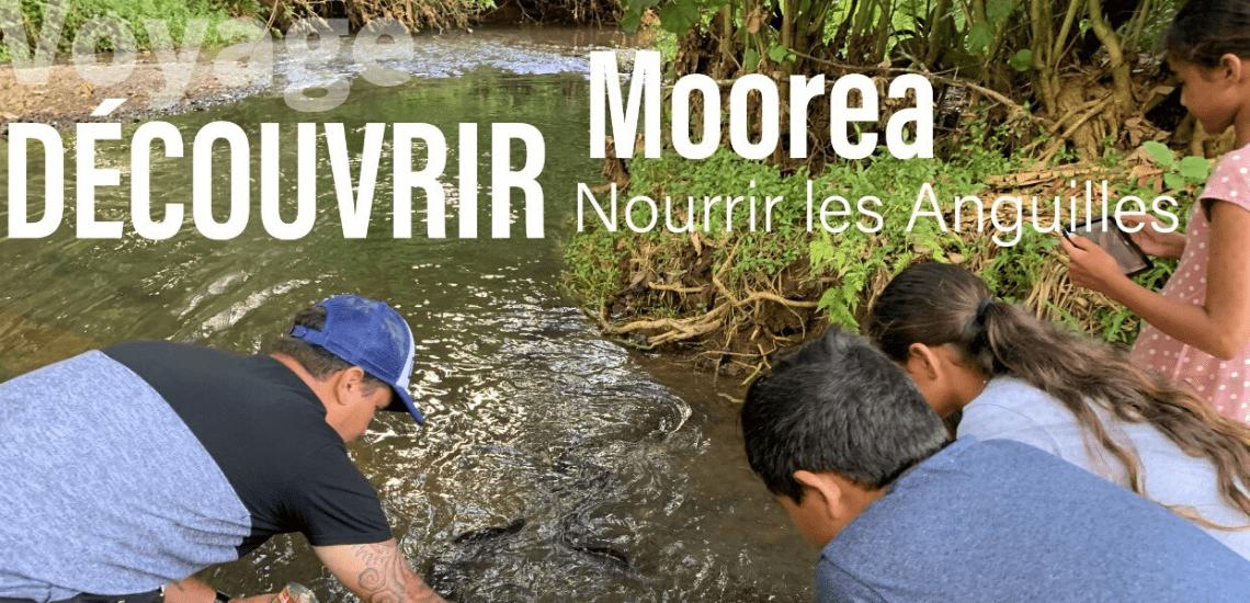 https://tahititourisme.com.au/wp-content/uploads/2020/03/mooreasafaritours_1140x5502-min.png