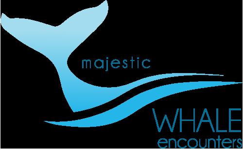 Whale Swim Moorea- Catamaran Small group tour